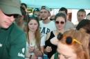 Picknick-Kino-Strandbad-Friedrichshafen-2017-05-25-Bodensee-Community-SEECHAT_DE-IMG_3870.JPG