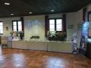 Hochzeitsmesse-Uhldingen-Bodensee-Hochzeiten_com-0386.jpg