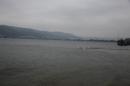 Eisschwimmen-Bodman-2018-02-24-Bodensee-Community-SEECHAT_DE-IMG_3578.JPG
