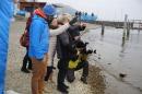 Eisschwimmen-Bodman-2018-02-24-Bodensee-Community-SEECHAT_DE-IMG_3580.JPG
