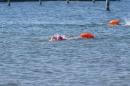 Eisschwimmen-Bodman-2018-02-24-Bodensee-Community-SEECHAT_DE-_171_.JPG