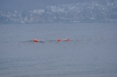 Eisschwimmen-Bodman-2018-02-24-Bodensee-Community-SEECHAT_DE-_197_.JPG