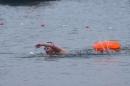 Eisschwimmen-Bodman-2018-02-24-Bodensee-Community-SEECHAT_DE-_211_.JPG