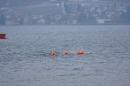 Eisschwimmen-Bodman-2018-02-24-Bodensee-Community-SEECHAT_DE-_30_.JPG