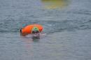 Eisschwimmen-Bodman-2018-02-24-Bodensee-Community-SEECHAT_DE-_71_.JPG
