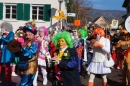 xFasnachtumzug-Embrach-Rorbas-4-3-2018-Bodensee-Community-SEECHAT_CH-_MG_7156.jpg