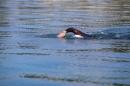 BODENSEEBOOT-Schwimmen-Katja-Rauch-2018-09-05-Bodensee-Community-SEECHAT_DE-IMG_1561.JPG