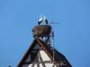 RIEDLINGEN-Gallusmarkt-Sonntag-181014DSCF9992.JPG