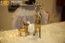 aBodensee-Hochzeiten_com-Uhldingen-Hochzeitsmesse-6-1-2019-SEECHAT_DE-IMG_4429.jpg