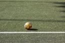 BSC-Young-Boys-YB-FS-1879-SG-ST-Gallen-2019-03-2019-SEECHAT_DE-_14_.JPG