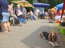 Waldflohmarkt-Rosna-Mengen-2019-07-07-Bodensee-Community-SEECHAT_DE_23_.JPG
