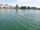 Bodenseeequerung-Bodenseeboot-Juergen-G-220719-Bodensee-Community-SEECHAT_DE-P1050116.JPG