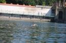 Bodenseeequerung-Bodenseeboot-Laier-250719-Bodensee-Community-SEECHAT_DE-IMG_2546.JPG