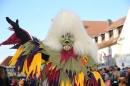 aNarrensprung-Langenargen-190120-Bodensee-Community-SEECHAT_DE-_4_.JPG