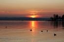 Immenstaad-am-Bodensee-Sonnenuntergang-07_11_2008-seechat_de-IMG_1997.JPG
