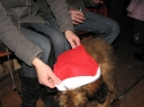 seechat_de-Chattertreffen-Ravensburg-Weihnachtsmarkt-141208-seechat_de-IMG_7199.JPG