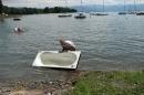 Badewannenrennen-Wasserburg-seechat-de-050708IMG_5720.JPG