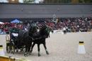 Hengstparade-Marbach-2008-031008-seechat_de-IMG_1643.JPG