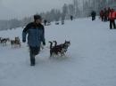 Schlittenhunderennen-Todtmoos-20100131-Bodensee-Community-seechat_de-IMG_8499.JPG