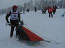 Schlittenhunderennen-Todtmoos-20100131-Bodensee-Community-seechat_de-IMG_8506.JPG