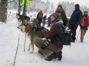 Schlittenhunderennen-Todtmoos-20100131-Bodensee-Community-seechat_de-IMG_8517.JPG