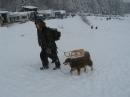 Schlittenhunderennen-Todtmoos-20100131-Bodensee-Community-seechat_de-IMG_8525.JPG