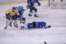 Eishockey-090310-Schwenniger-Wild-Wings-Fuechse-Lausitz-seechat_de-_102.JPG