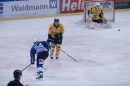 Eishockey-090310-Schwenniger-Wild-Wings-Fuechse-Lausitz-seechat_de-_115.JPG