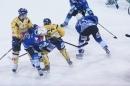 X1-Eishockey-090310-Schwenniger-Wild-Wings-Fuechse-Lausitz-seechat_de-_41.JPG
