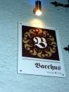 Wunderfitz_Bacchus_Ravensburg-13_5_10-Bodensee-CommunityCIMG4410.JPG