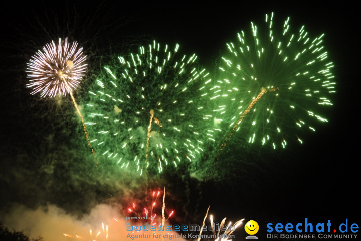 sea of love 2011 - Sommerfestival mit David Guetta am Tunisee bei Freiburg,