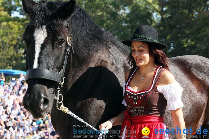 X2-Hengstparade-Marbach-2011-011011-Bodensee-Community-SEECHAT_DE-IMG_0592.JPG