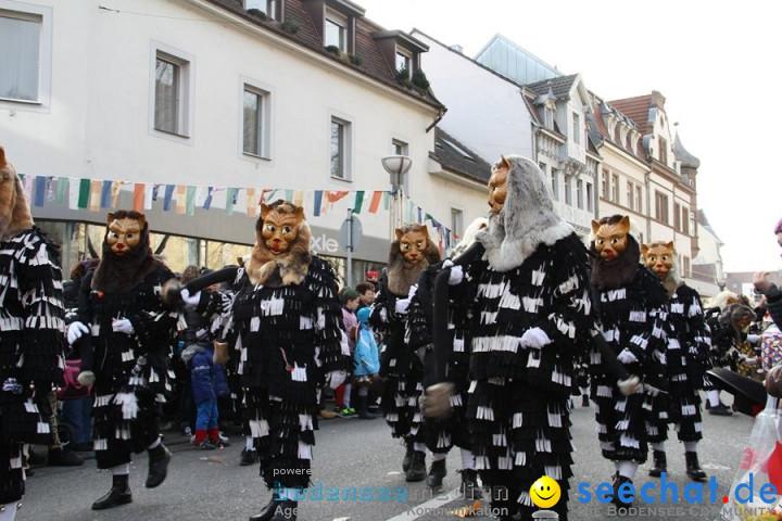 Kinderumzug - Fasnetsumzug: Singen am Bodensee, 18.02.2012
