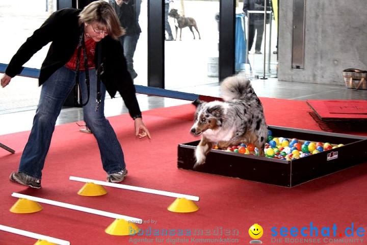 Hundemesse 2012: Oberschwabenhalle: Ravensburg, 25.02.2012