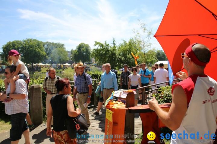 Internationales Donaufest: Ulm an der Donau, 06.07.2014