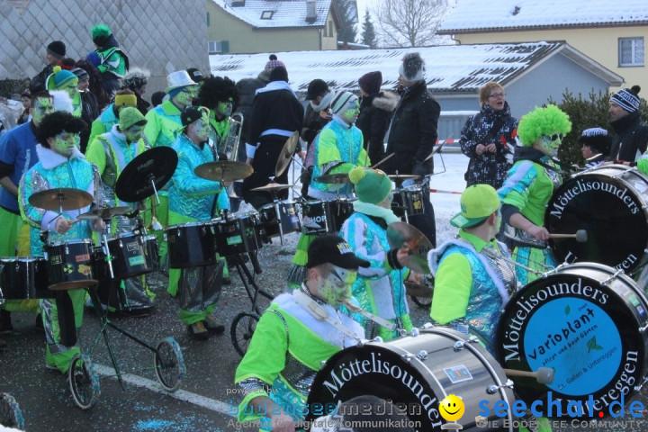 Fasnachtsumzug: Lengenwil - Schweiz, 08.02.2015