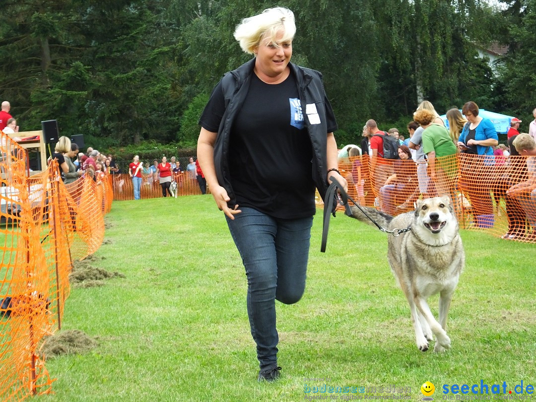 Struppirennen im Tierschutzverein: Bad-Saulgau, 04.09.2016