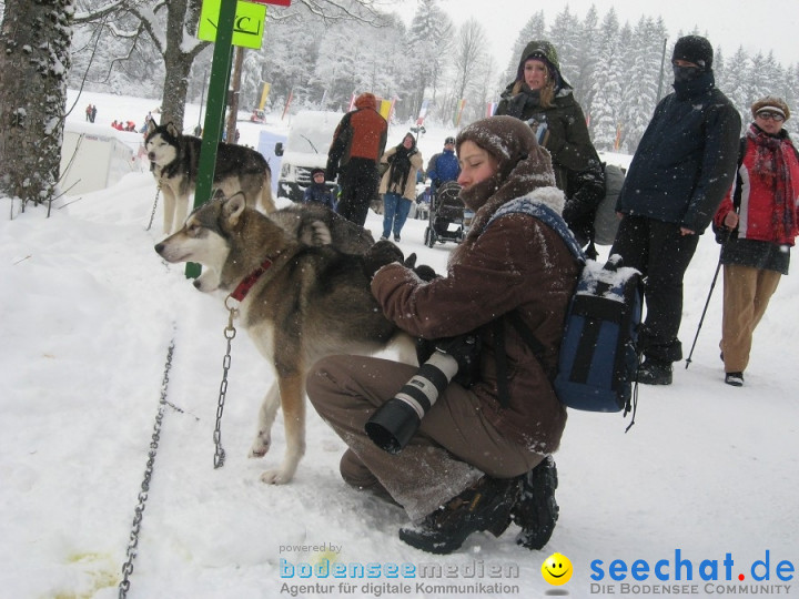 Internationales Schlittenhunderennen: Todtmoos im Schwarzwald, 31.01.2010