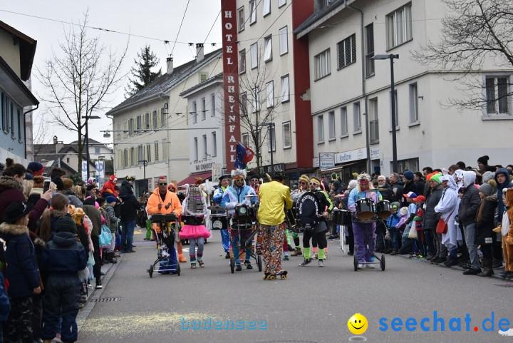 Fasnachtsumzug: Neuhausen - Schweiz, 18.02.2018