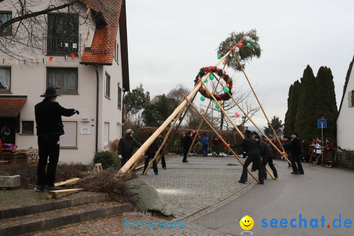 Narrenbaumstellen: Berg am Bodensee, 26.01.2019