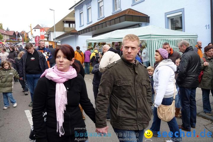 X2-Schaetzelemarkt-Tengen-2010-23102010-Bodensee-Community-seechat_de-P1020136.JPG