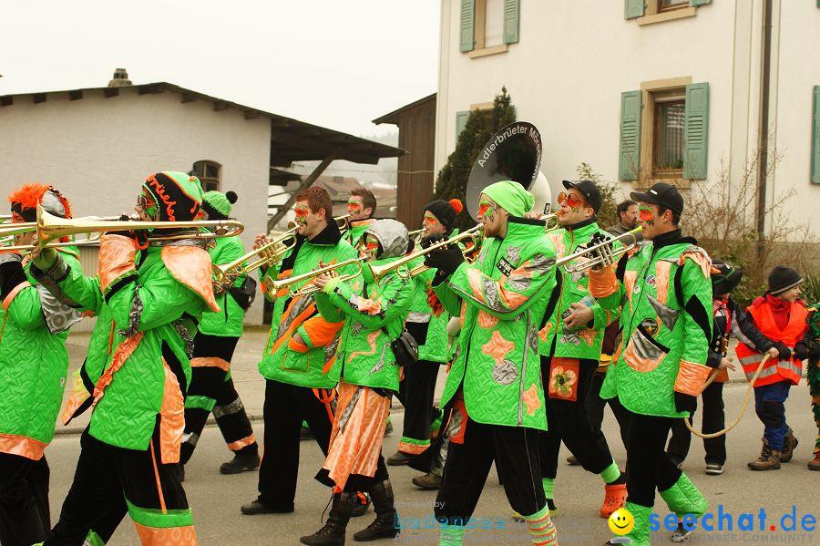 Narrenbaumstellen: Orsingen am Bodensee, 29.01.2011