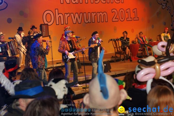 Naerrischer-Ohrwurm-Stockach-200211-seechat_deDSC03366.JPG